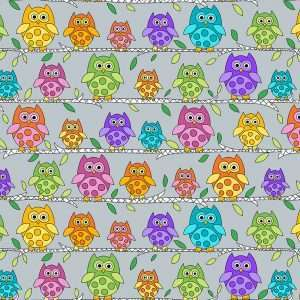 Kim Schaefer - Hoot Hoot new-apr